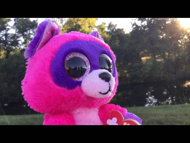 632fcf75791 Beanie Boo Music Video  Try Everything
