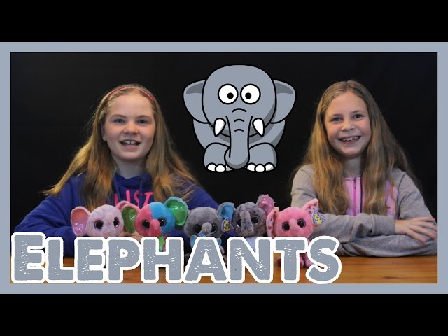 2213235a067 Beanie Boos Toy Review ELEPHANTS THE BOO REVIEW PEANUT